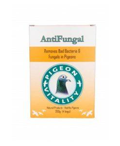 PV Antu Fungal